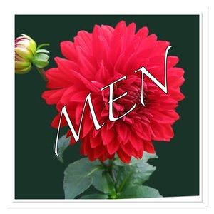 Men styles Reasonable Ofer are always welcome
